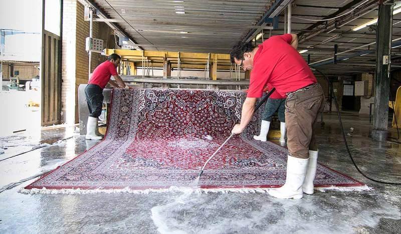 رفع زردی فرش | شرکت فرش اکسیر